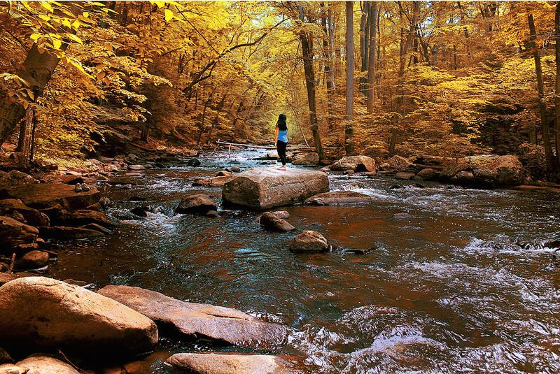 The river (short fiction)