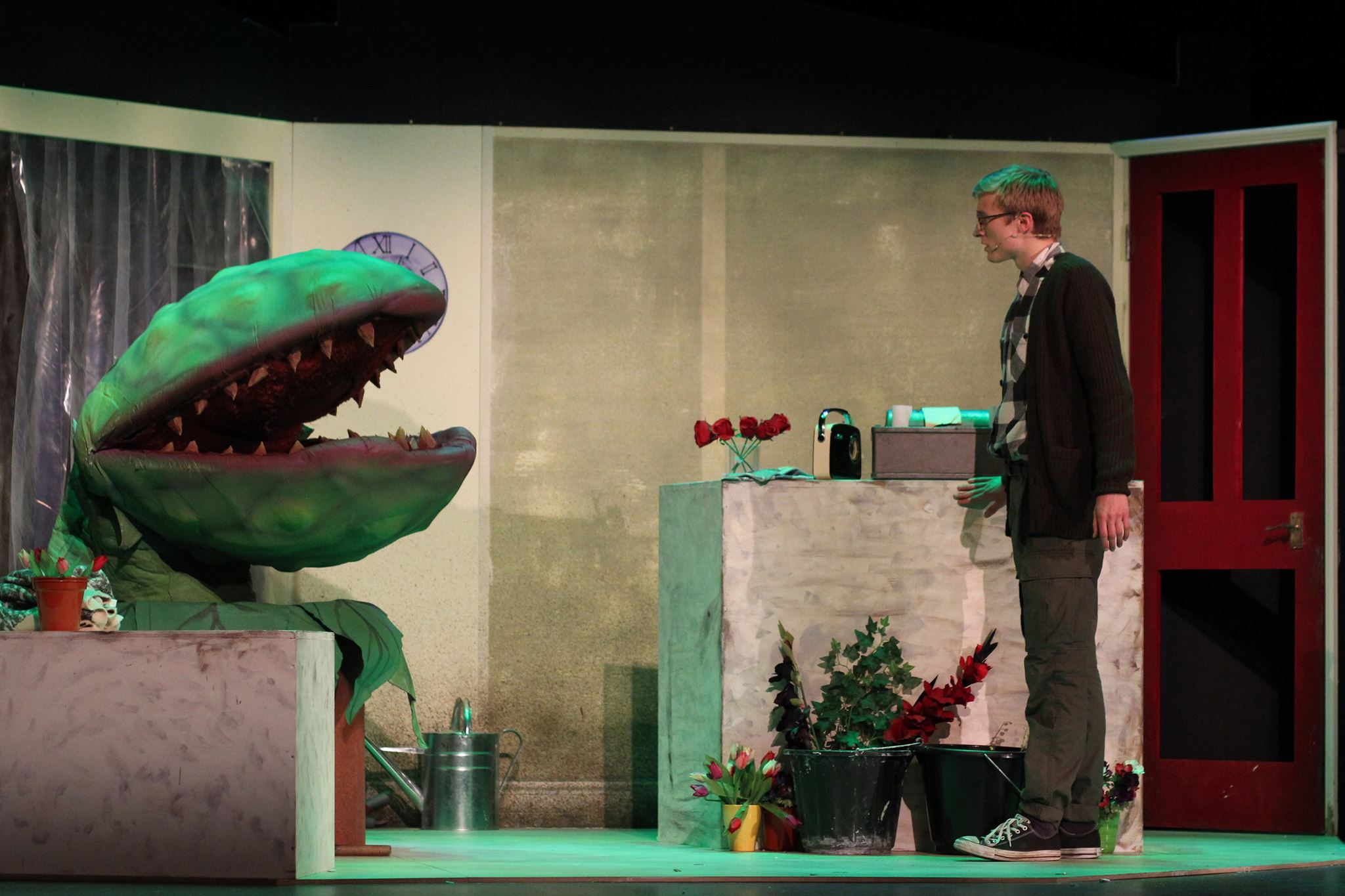 An Array of Delights in this Little Shop of Horrors