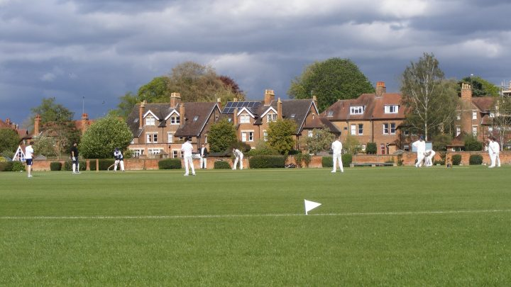 Wicket-to-Wicket: exploring the top and bottom of University Cricket