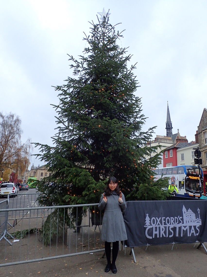 Japanese Christmas Tree.A Japanese Backpacker S Experience Of Three Different Types